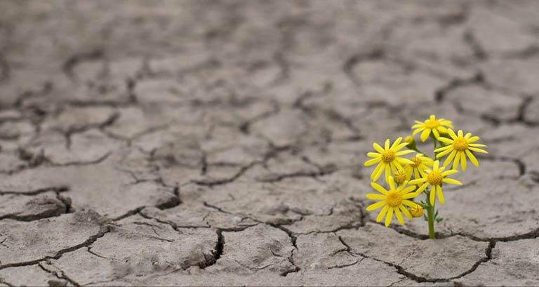 راهکارهای تقویت امید به زندگی