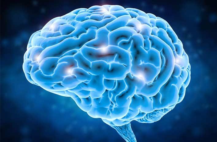 تاثیر مصرف کوکایین بر مغز