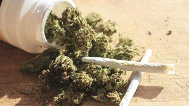 نشانه ها و علائم اعتیاد به مخدر گل