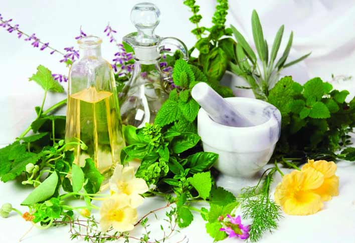 گیاهان تقویت کننده اشتهای کودکان
