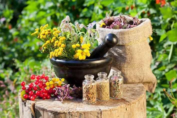 مصرف گیاهان دارویی